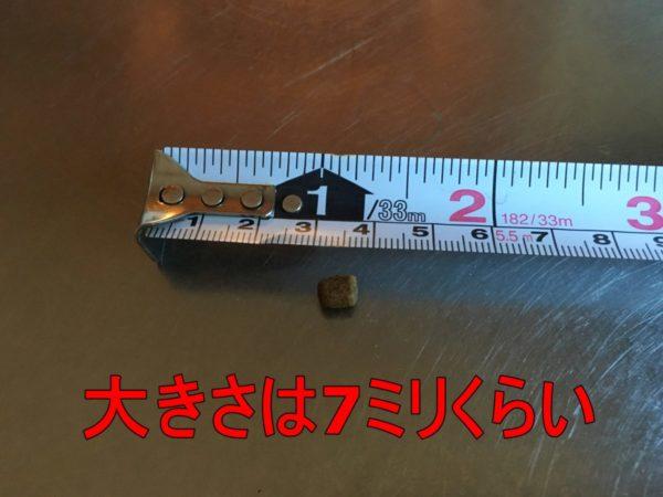 モグニャンの1粒の大きさは7ミリくらい